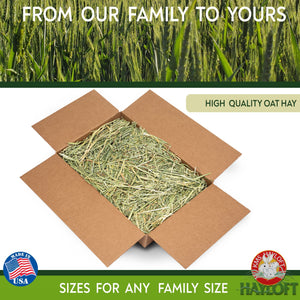 5 Pound Hay Bundles - KMS Hayloft