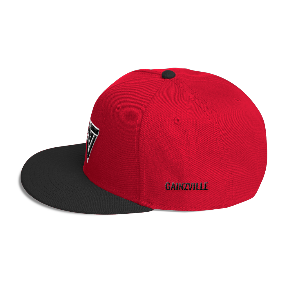 Red & Black Gainzville Snapback