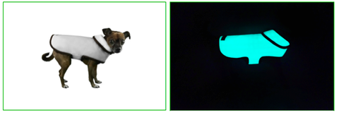 "Lavish Pets is set to be a Glowing success at the SuperZoo Pet Product Expo in Las Vegas with the Release of Gloture - the World's First <font color=""green"">Glow In The Dark</font> Dog Clothing at Booth#13293!"