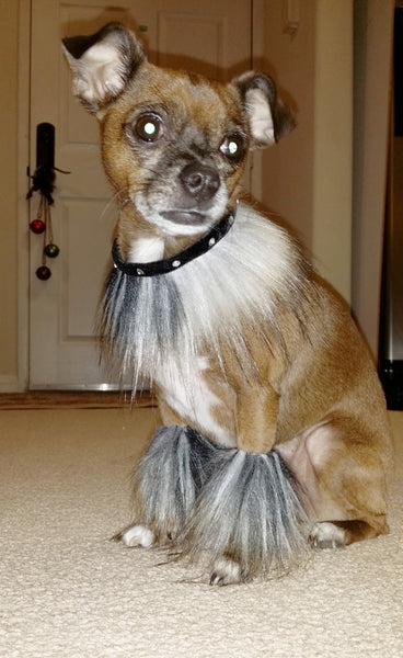 Bella Poochy Faux Fur Necklace & Matching Leg Warmers - Lavish Pets