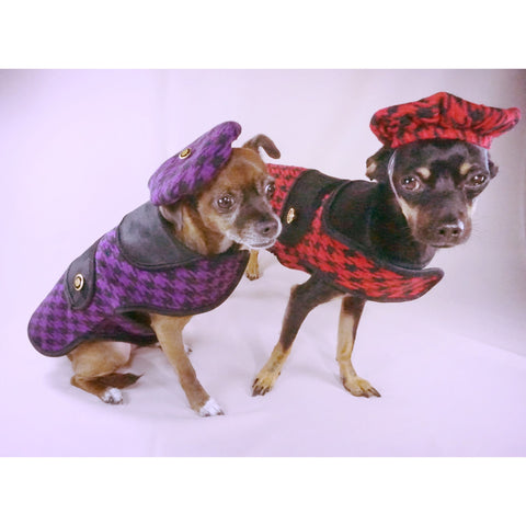 Bella Poochy Designer Print Coat With Corduroy Lining And 24K Gold Buttons - Lavish Pets
