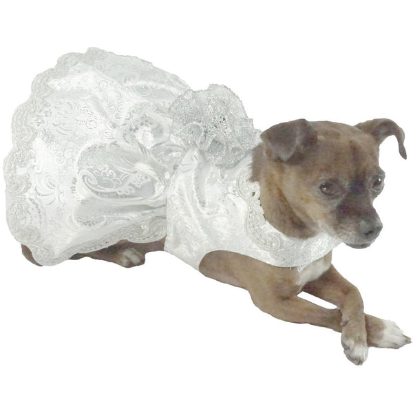 Bella Poochy Silver Deluxe Dress