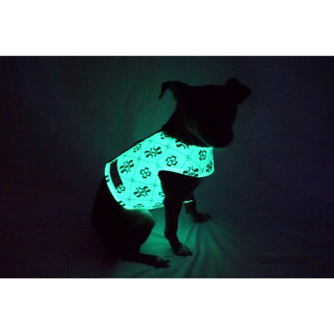 GLOTURE Glow-In-The-Dark GloHarness - Lavish Pets