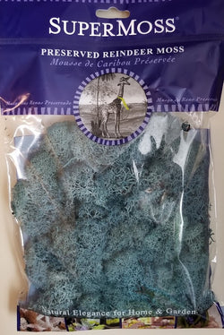 Reindeer Moss  2 oz. Bag ~  Blue