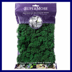 Fairy Garden Miniature  Reindeer Moss Forest 2 oz. Bag - Fairy Garden Fun
