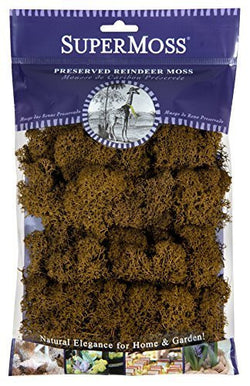 Fairy Garden  Reindeer Moss  2 oz. Bag ~ Brown - Fairy Garden Fun