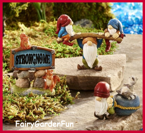 Fairy Garden  Game Of Gnomes Strongnomes Set 299 - Fairy Garden Fun