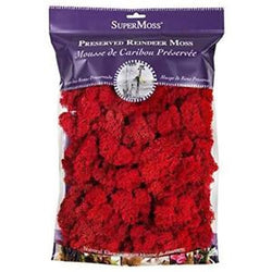 Fairy Garden  Reindeer Moss  2 oz. Bag ~ Red - Fairy Garden Fun