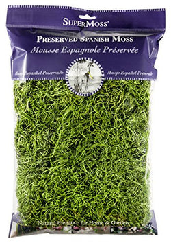 Fairy Garden Miniature  Spanish Moss  2 oz. Bag ~ Grass - Fairy Garden Fun