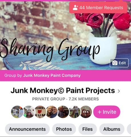 junk monkey paint painters group