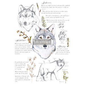 Gray Wolf transfer by redesign with Prima! Furniture decal transfer