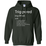 Triggered-Definition---Funny-Meme-Definitions---GIFT-Pullover-Hoodie---Teeever.com-Black-S-