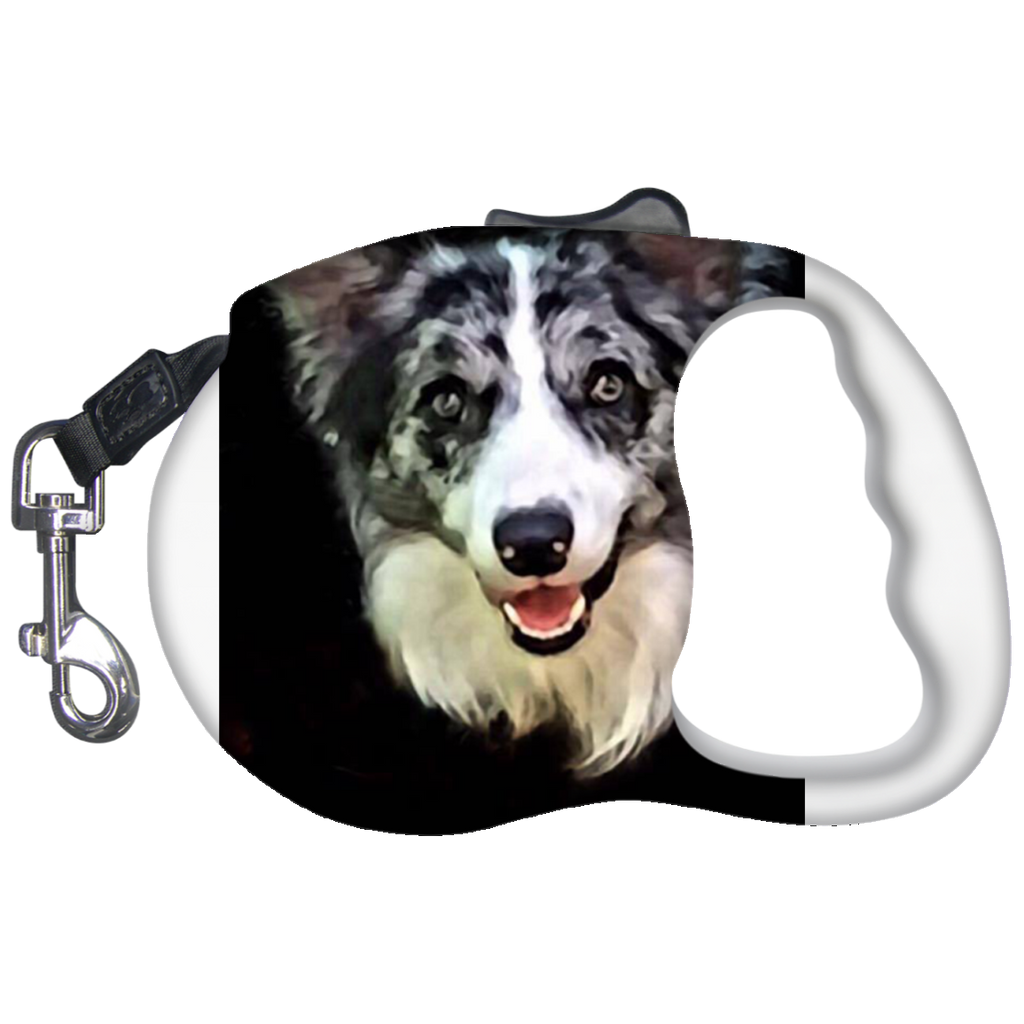 Retractable-Dog-Leash-White-One-Size-