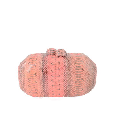 VIERA BY RAGAZZE Pink Clutch Bag