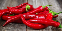 capsaicin for herbal pain relief oil