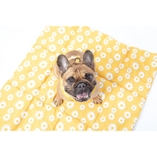ON-THE-GO PET MAT: Bee-Hiving (RESTOCKED!)