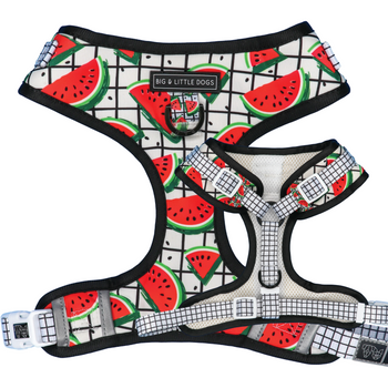 Adjustable Dog Harness A Slice of Summer Watermelon