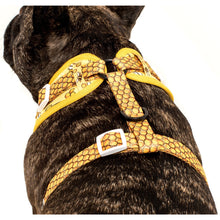 Adjustable Dog Harness Bee-Hiving Bee and Honeycomb