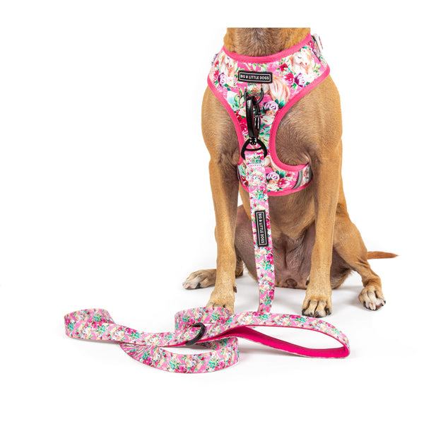 Adjustable Dog Harness Born to be a Unicorn Pink Flowers