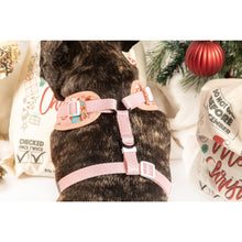 Adjustable Dog Harness Christmas Cookies