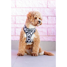 Adjustable Dog Harness Grey Leopard