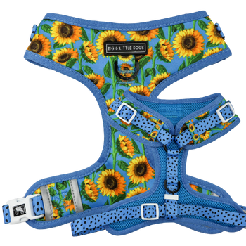 Adjustable Dog Harness Hello Sunshine Blue Sunflowers