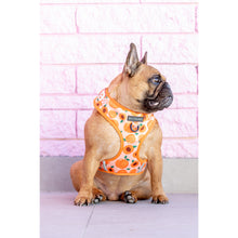 Adjustable Dog Harness Just Peachy Peaches
