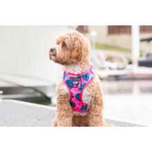 Adjustable Dog Harness Summer Lovin' Monstera Leaves and Pink