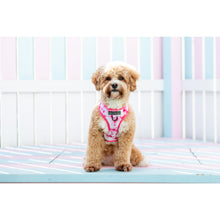 Adjustable Dog Harness Pink Tie Dye
