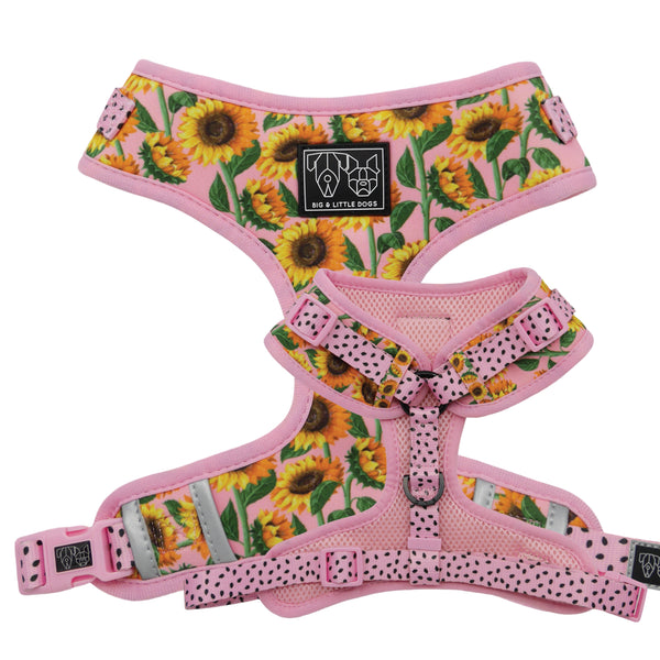 Adjustable Dog Harness You Are My Sunshine Sunflowers