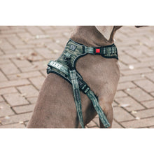 All Rounder Dog Harness Camouflaged