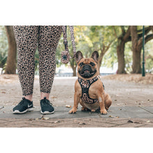 All Rounder Dog Harness Luxurious Leopard