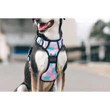 All Rounder Dog Harness Pastel Dreams