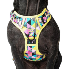 All Rounder Dog Harness All Sorts Colourful Geometric Pattern