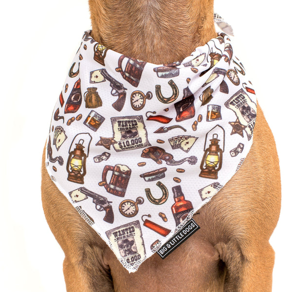 Best in the West Western Dog Cooling Neckerchief Bandana