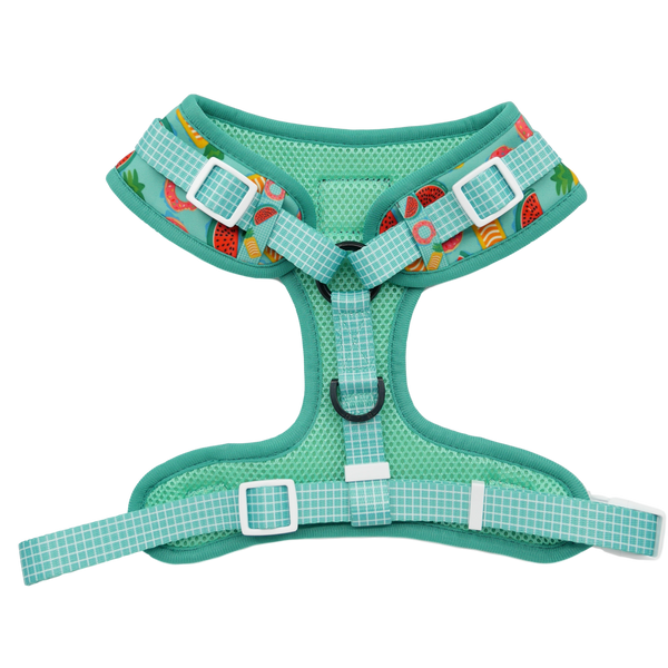 Adjustable Dog Harness A Splashing Good Time Pool Floats Fruit