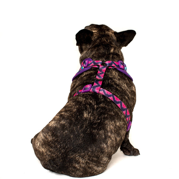 Adjustable Dog Harness for Big and Small Dogs Monster Mash Cartoon Monsters