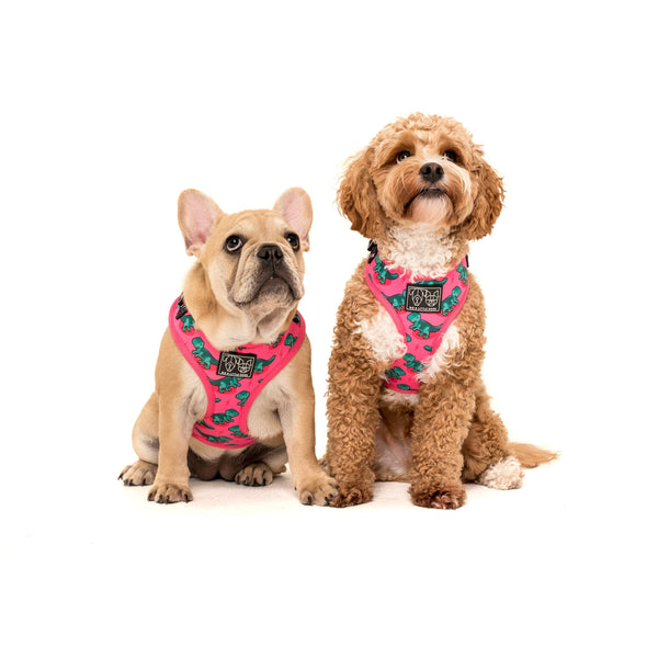 Adjustable Dog Harness Princess-asaurus Pink Dinosaur