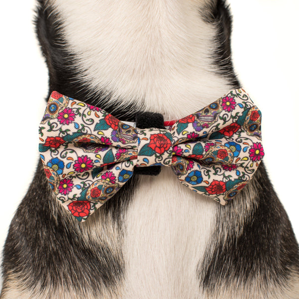 Dog Collar and Bowtie for Big and Small Dogs Day of the Dead Skulls