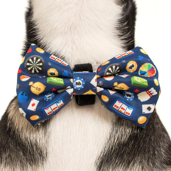 Dog Collar and Bowtie for Big and Small Dogs High Roller Las Vegas