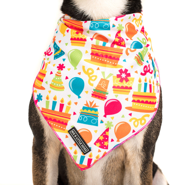 Dog Cooling Neckerchief Bandana Birthday Cake