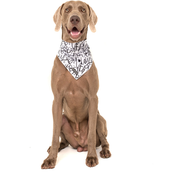 Dog Cooling Neckerchief Bandana Black and White Birthday