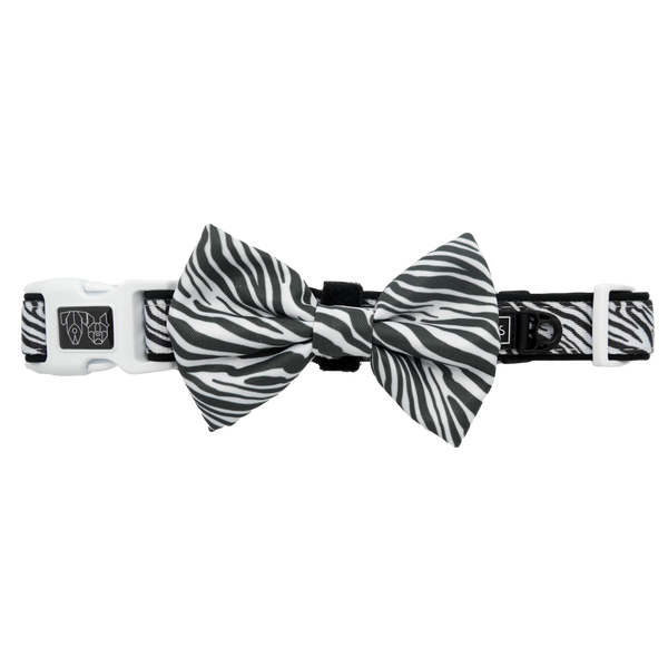 Dog Collar and Bow Tie Into The Wild Zebra Pattern