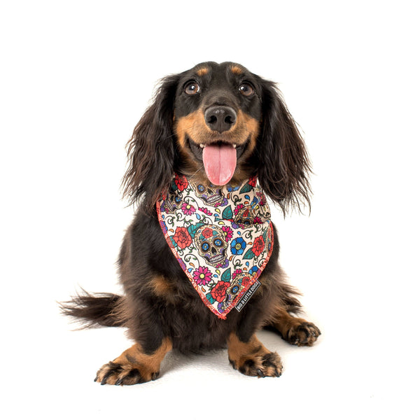 Cooling Dog Neckerchief Bandana for Big and Small Dogs Day of the Dead Skulls