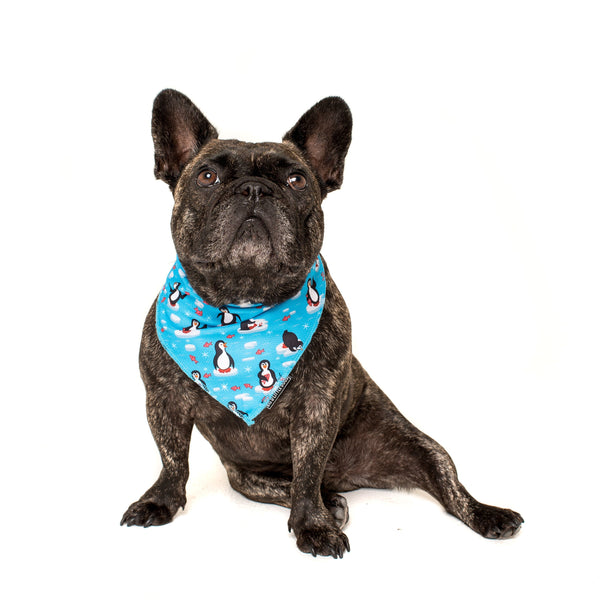 Cooling Dog Neckerchief Bandana for Big and Small Dogs Every Day I'm Waddlin Penguins