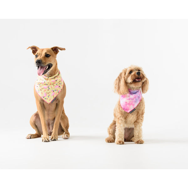 Neckerchief Bandana for Big and Small Dogs Flamingos
