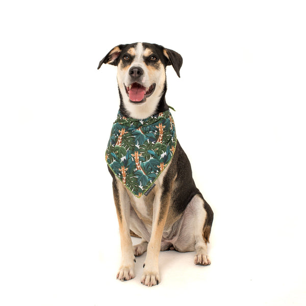 Cooling Dog Neckerchief Bandana for Big and Small Dogs Standing Tall Giraffes in Jungle