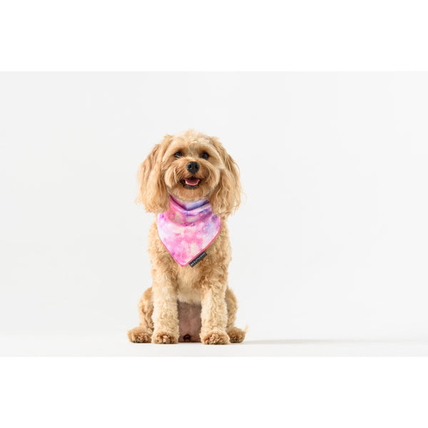 Neckerchief Bandana for Big and Small Dogs Dreamer Galaxy Stargazing