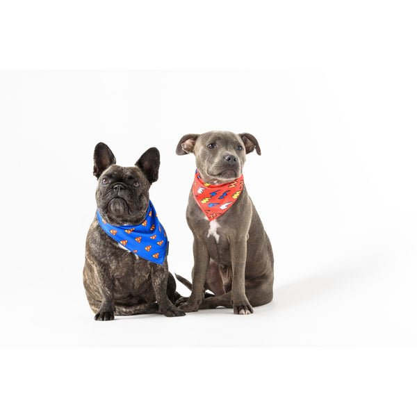 Neckerchief Bandana for Big and Small Dogs Lightning Bolts