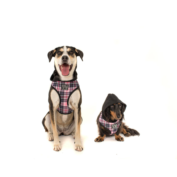 Hoody Dog Harness Pretty in Pink